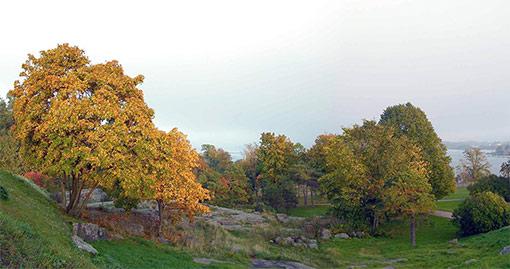 Kuva: Jouko Lehmuskallio
